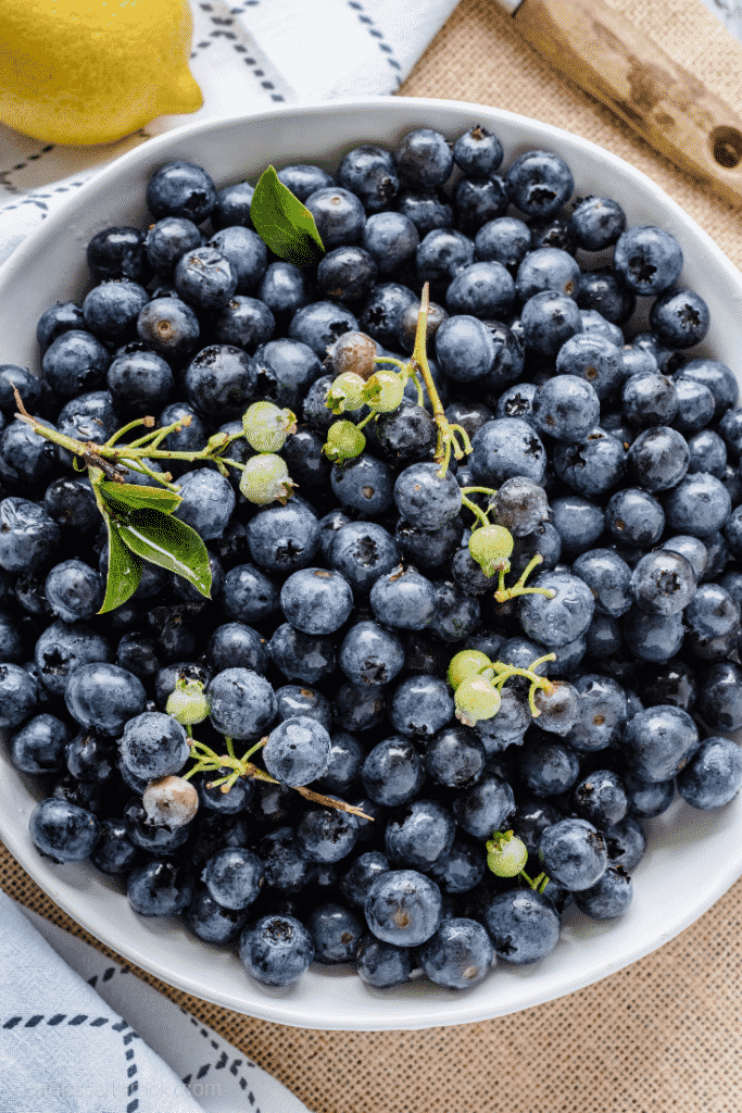 Raw blueberries in a white bowl