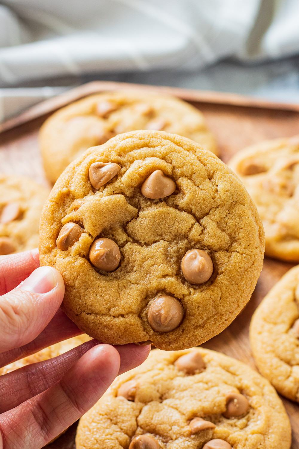 hand holding a baked butterscotch chip cookie